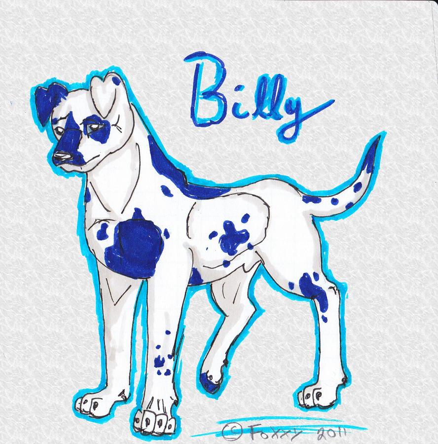 Billy :3