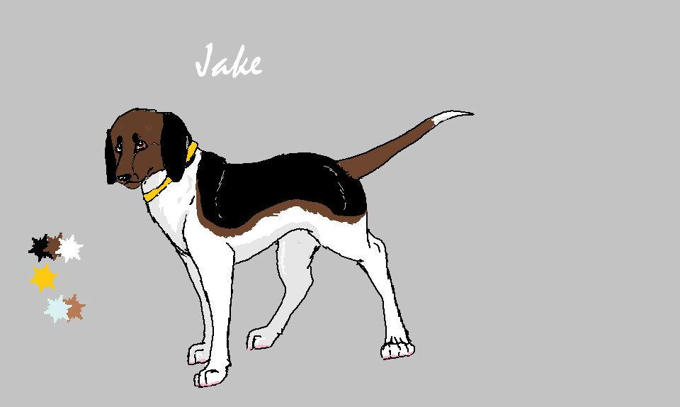Vuoden 2014 reffi Jakelle C: