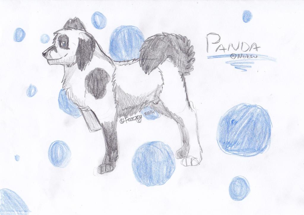 Noksun ihana hahmo Panda