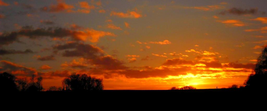 Sunset by flegom