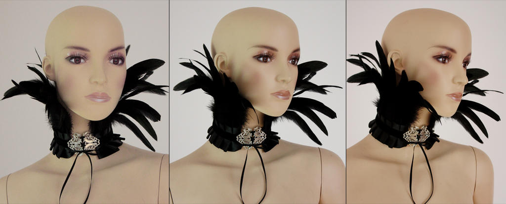 Feather neck corset I by Pinkabsinthe