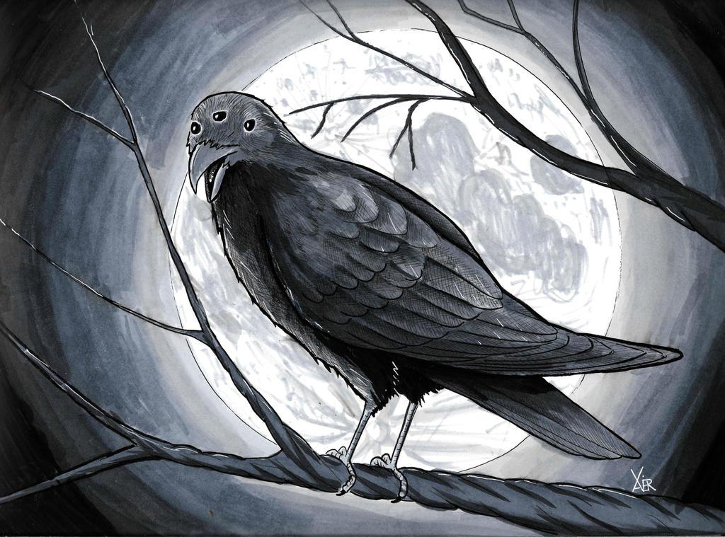 Three eyed Raven by crazyxav on DeviantArt