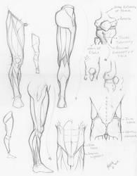 Random anatomy sketches 4 by RV1994