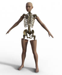 Skeleton Fit by ChristopherW64