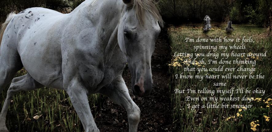 A LITTLE BIT STRONGER Lyrics - SARA EVANS