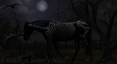 Lonely Road by keep-it-country