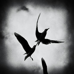 . by MWeiss-Art