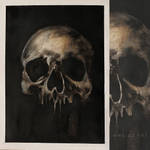 skull .. from the seriess of anatomical paintings