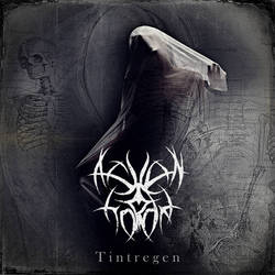 cover for ASHEN HORDE  Tintregen by MWeiss-Art