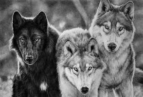 Three Friends by NataliWF