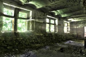 cellar by Replie