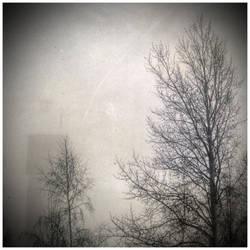 Fog by hillo-sipuli