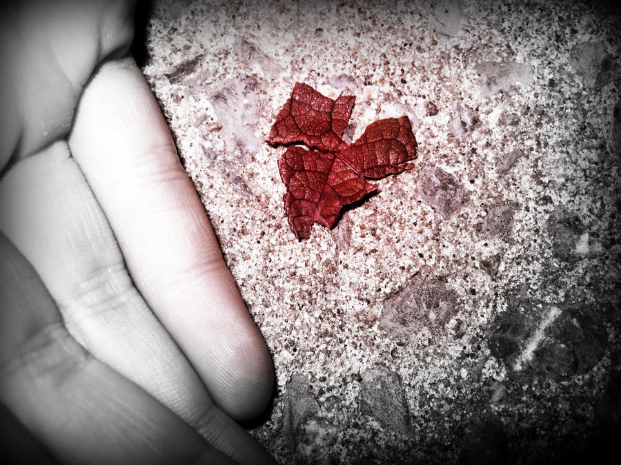 Broken Life Leaf by Elfiane