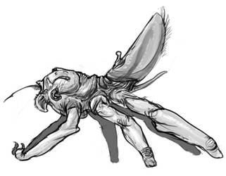 Insect/spider like predator by exo-bio