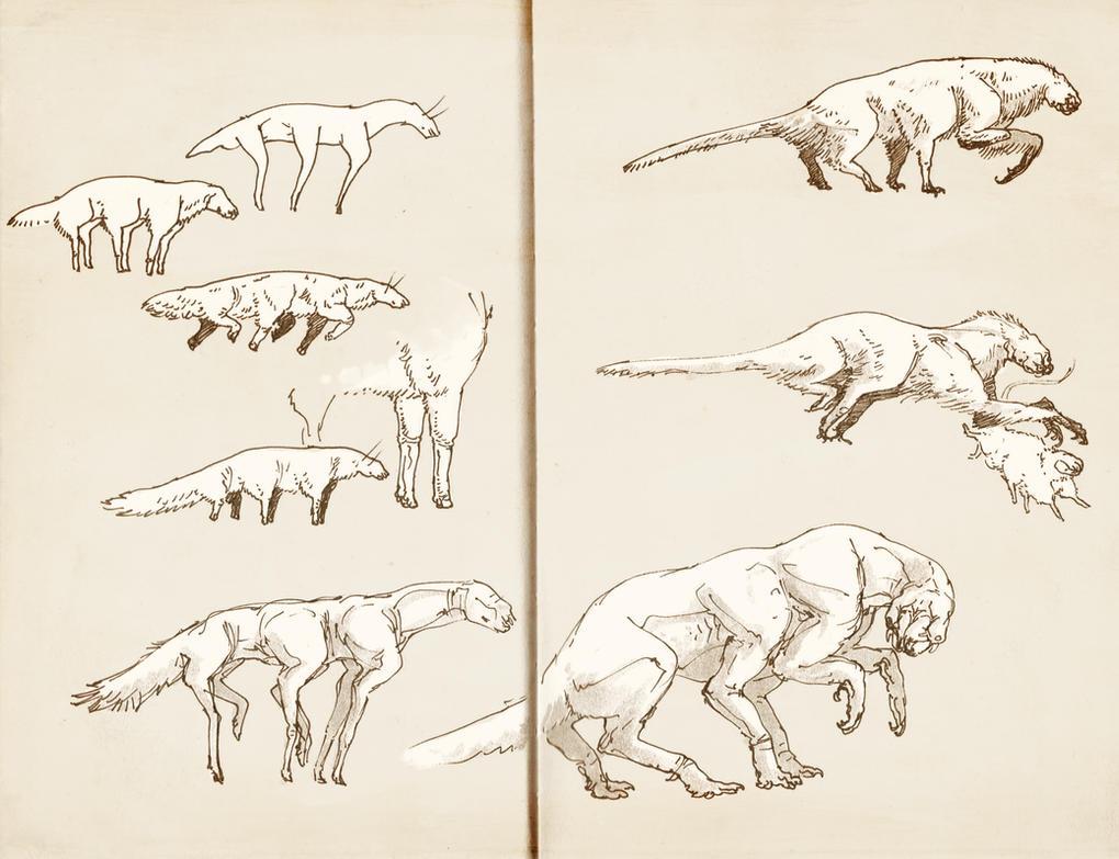 Notebook creatures 3 by Exobio