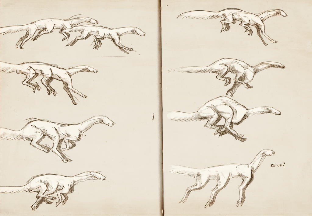 random gait sketches by Exobio