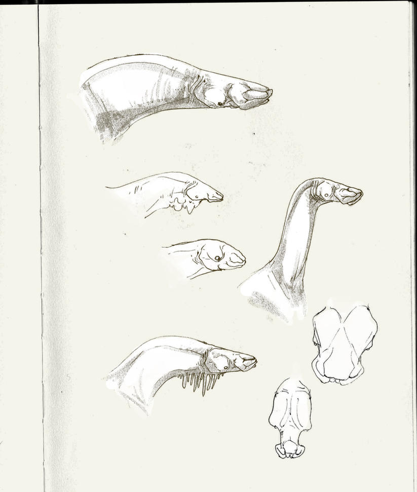 Herbivore headshots by Exobio