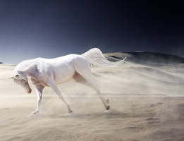 the albino by Banni-Whitemane