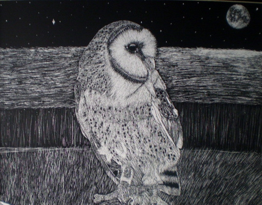 Barn Owl Scratchboard Complete by Cleverun