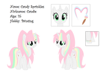 Candie Reference Sheet November 2014