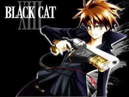 black cat train heartnet by elementprincess-wolf
