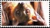 fruit bat stamp by vcrbit