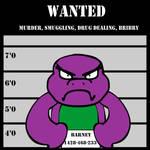 Barney (Dashiexp version)