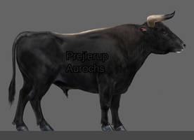 Prejlerup Aurochs side
