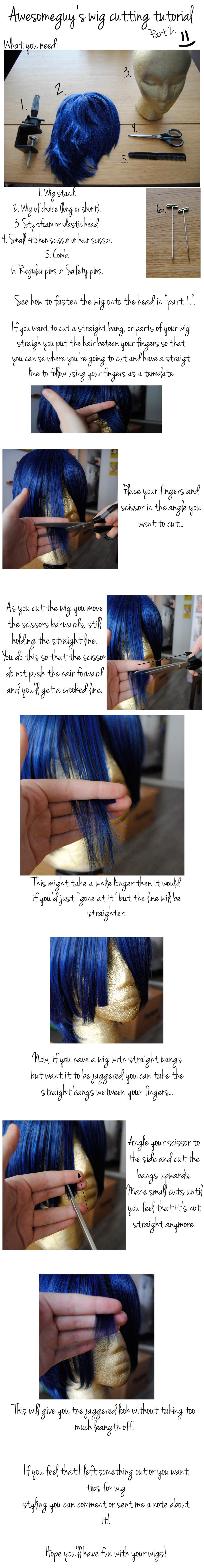Awesomeguy's Wig Cutting Tutorial Part 2