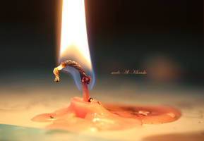 The Life of a Candle by me6o
