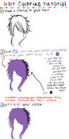 Paint Tool Sai Hair Coloring Tutorial