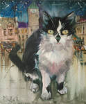 Cat from Karvina by PawelGladkow