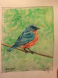 Bluebird by Walmsley