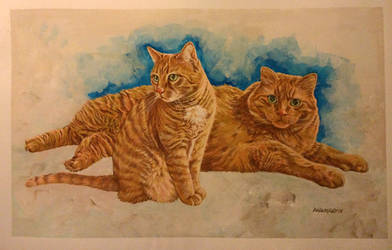 Cats by Walmsley