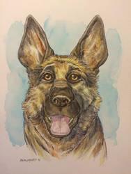 Dogmeat by Walmsley