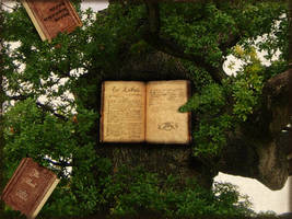 Tree of Knowledge details WP by The-Fairywitch