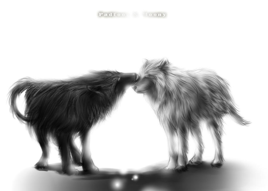 Padfoot and Moony by luosong on DeviantArt