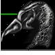Bird helm black by Kayleigh-Kaz