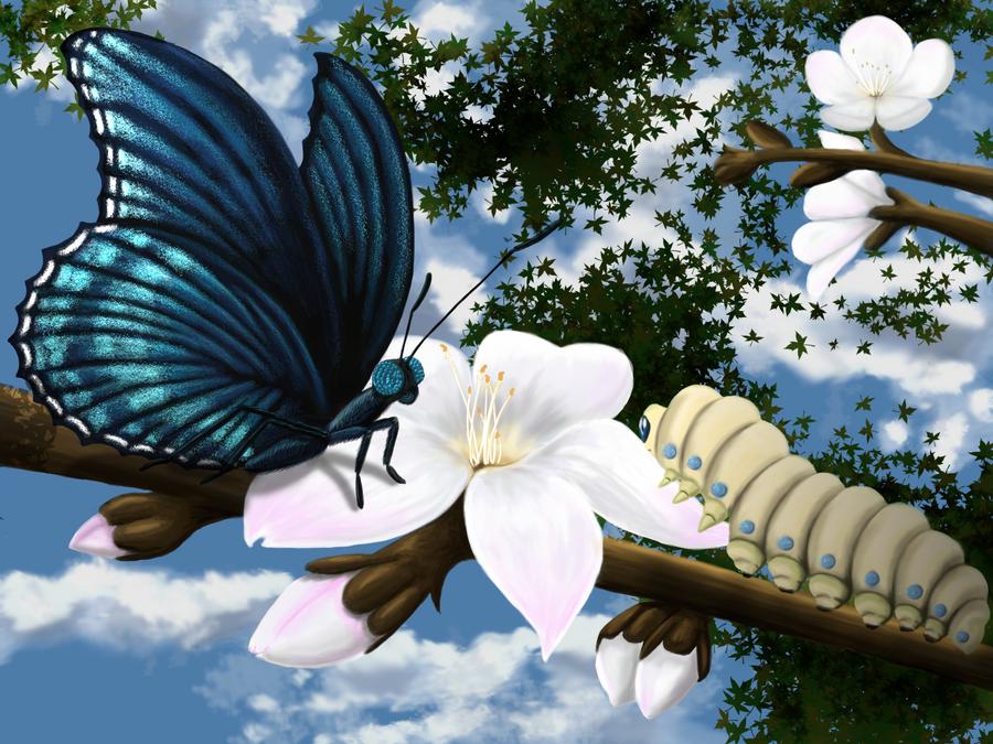 Blossom by Ciberfriky