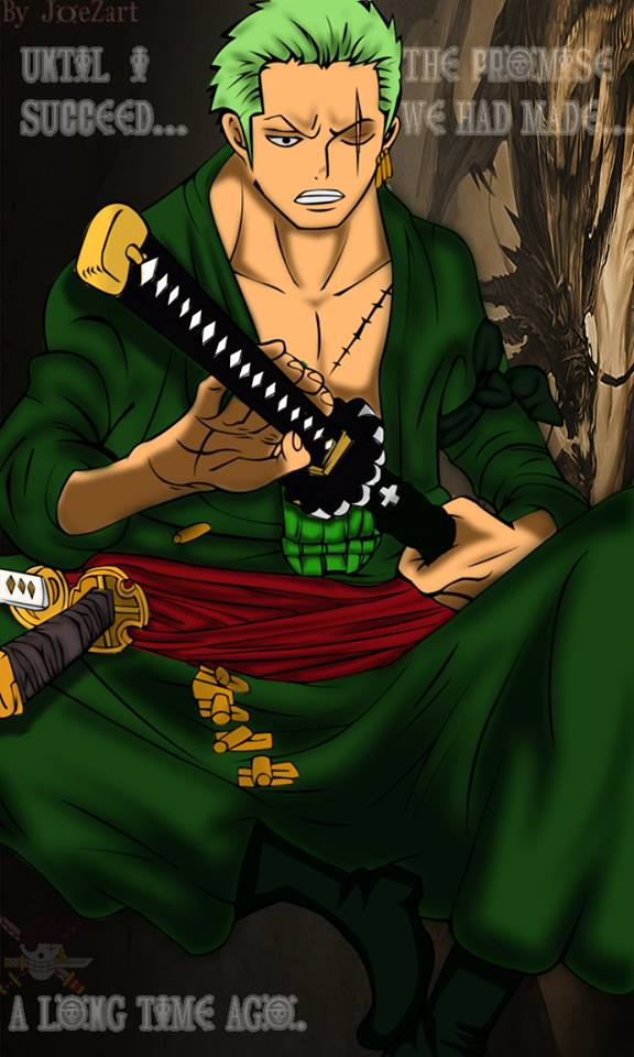 Zoro One Piece Time Skip What is your pe...
