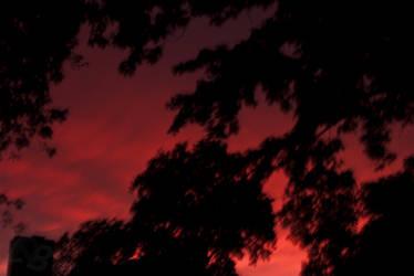Garnet skies.