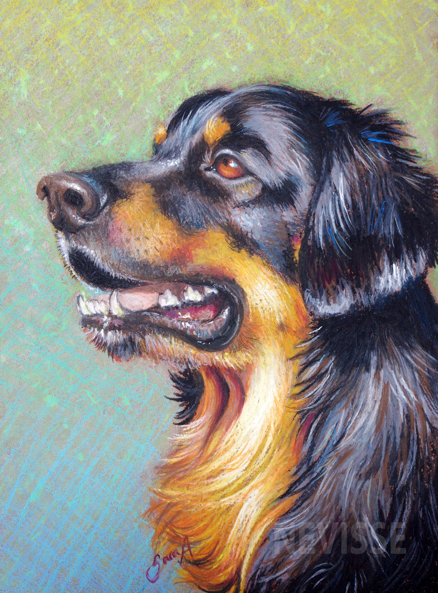 Oil Pastel Paintings Animals