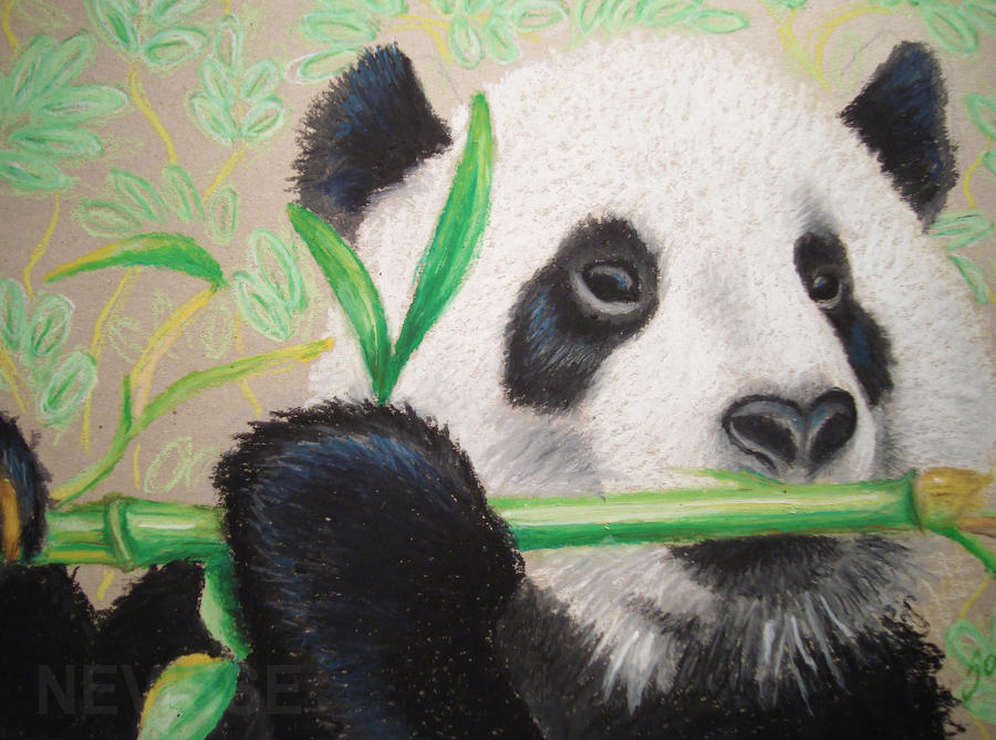 Oil pastel panda by Nevisse