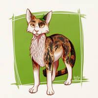 Spottedleaf - Warriors by IdrilFox