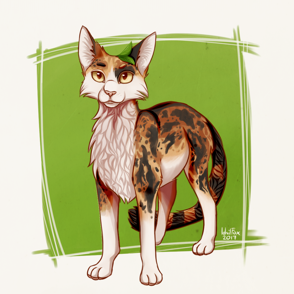 warrior cats coloring pages spottedleaf - photo#26