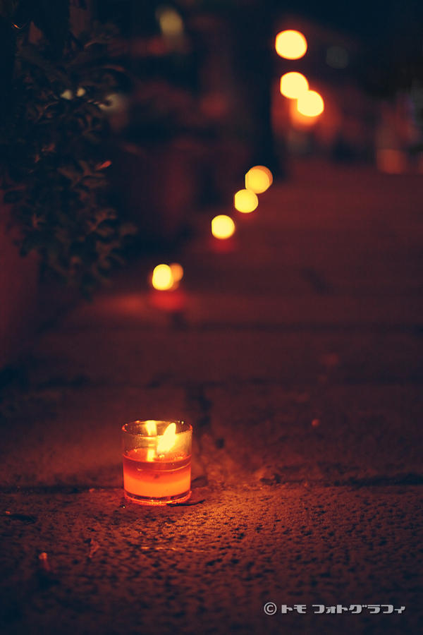 Candle Road by WindyLife