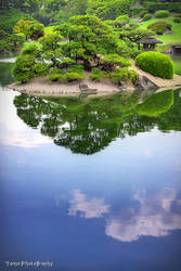 Japanese Garden in the Sky by WindyLife