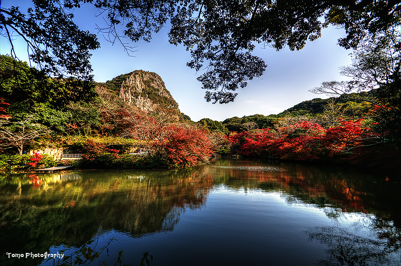 Japanese Garden IV by WindyLife