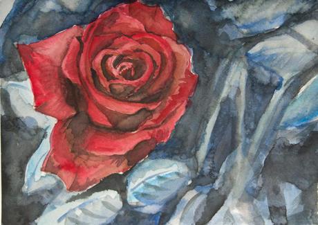 Rose Blue Pale