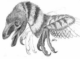 Bird of Prey by painted-wolfs-den